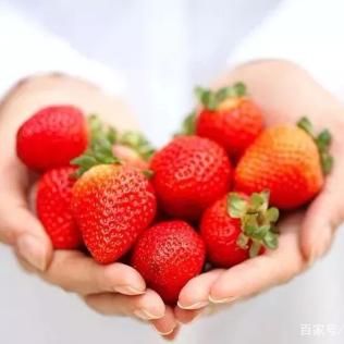 美沺农业科技服务(济宁)有限公司